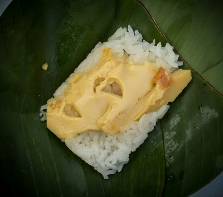 Sticky rice with Thai custard is a dessert of ancient Thailand  photo