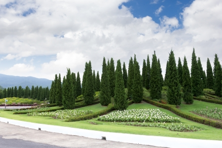 the image of the pole garden with sky in thailand photo