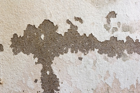 the image of the Stain on the wall photo