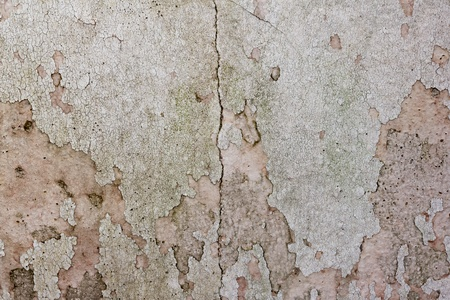 drop ceiling: the image of the Stain on the wall