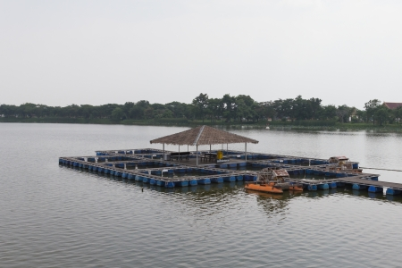 the coop for fish farm in river of thailand photo