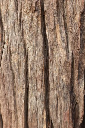 織り目加工、木材ボードの背景は、ビンテージ スタイル 写真素材