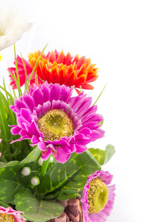 the isolated of the fake flower with colorful daisy on white background photo