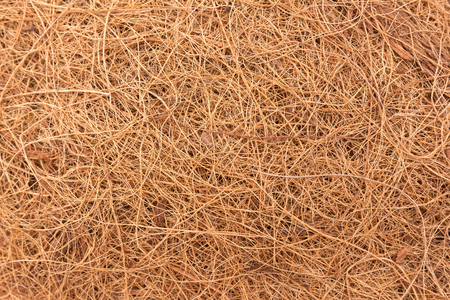 the texture, background of brown straw is bird nest