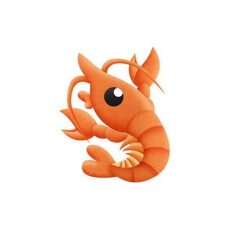 the shrimp cartoon is animal in underwater to sea of paper cut photo