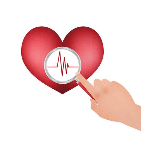 signos vitales: Los signos vitales del Corazón y lupa para Salud
