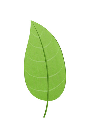白い背景の上の緑の葉はペーパー カット デザインです。