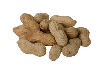 groundnut: Peanut or groundnut isolated white background
