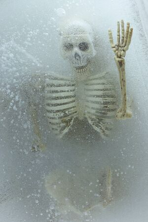 inter: Art concept Death on ice,skeleton in ice