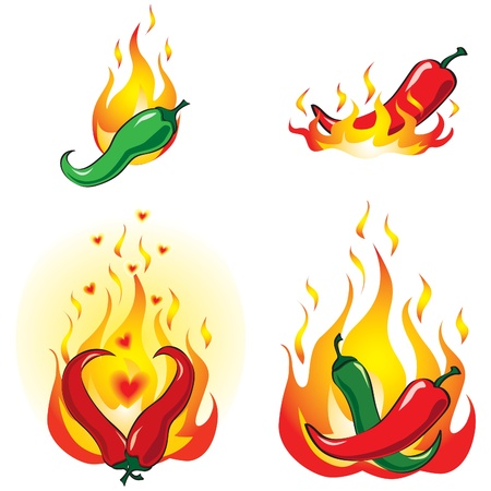 hot peppers: Hot and spicy chili peppers