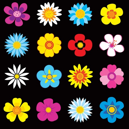 buttercup flower: Set of colorful flowers Illustration