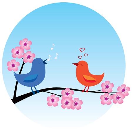 Two birds in love on a sakura branch