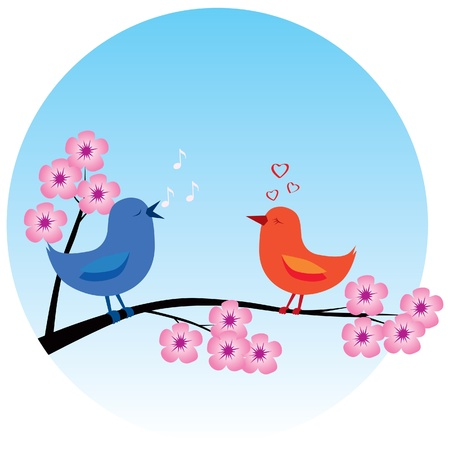 Two birds in love on a sakura branch