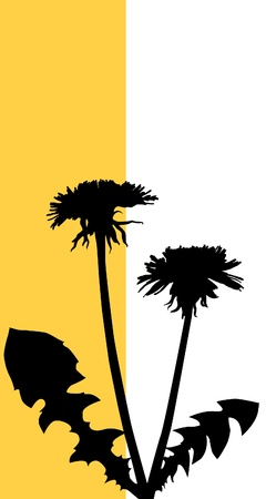 traced: Dandelion silhouette (hand traced from photo)