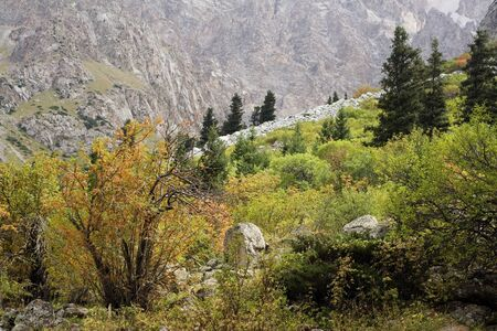 Autumn in the mountains (Tien Shan) Stock Photo