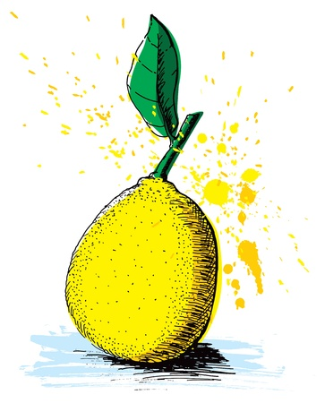 zesty: Hand drawn lemon with splatters of paint