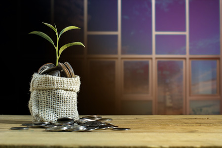 Plant growing on coin pile on woo table with building background. Conceptual savings or investing money for growing your business and finance. Concept background copy space.