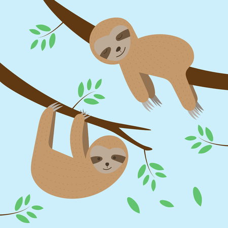 Cute sloths cartoon sleeping and hanging on tree branch background. Vector illustration.