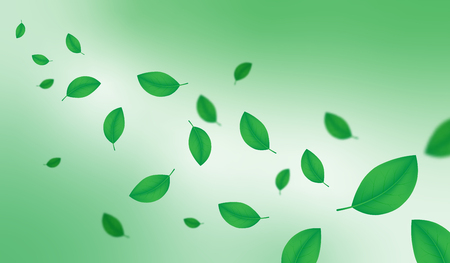 Creative illustration spring season green leafs background decorative. Vector illustration EPS 10.