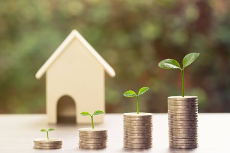 Property investment concepts.  A plant growing on stack of coins and blurred small house model and nature as background. Depicts a lasting and long-term investment. Home loan, mortgage, real estate. Stok Fotoğraf
