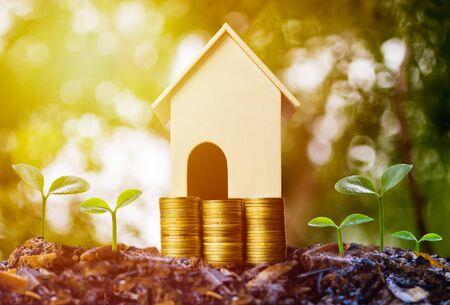 Saving money, home loan, mortgage, a property investment for future concept. A small house model over stack of coins and growing green plant on soil. A sustainable investment.