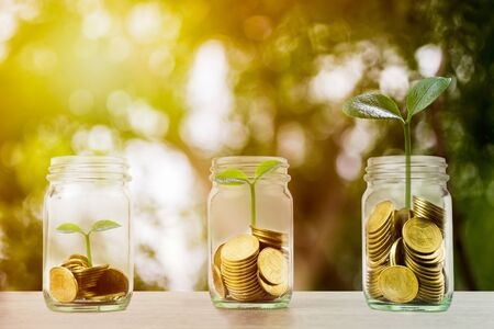 Making money and money investment concept. A stack of coins in glass jar with growing plant and sunlight. Depicts long-term investment And wealth and financial stability. Stok Fotoğraf - 131795039