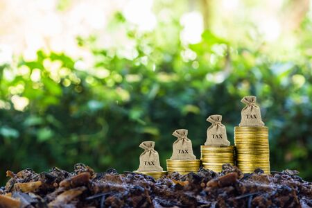 Conceptual about tax benefit or mandatory financial charge. Tax bag on growth stack of coins on soil with nature background. Depicts Taxes are related to people in our daily lives.