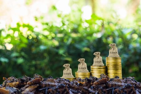 Financial loan concept. A money bag on stack of coins on soil with nature background. Stok Fotoğraf