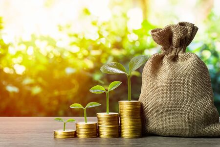 Making money and money investment, Savings concept. A plant growing on rising stack of coins with money bag and nature background. Depicts long-term investment And wealth and financial stability. Stok Fotoğraf