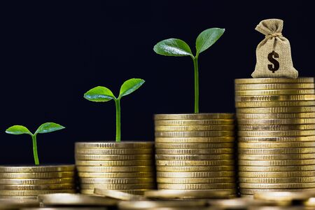 Money savings, investment, making money for future, financial wealth management concept. A plant growing on rising stacked coins and money bag. Depicts fund growth and wealth. Stok Fotoğraf