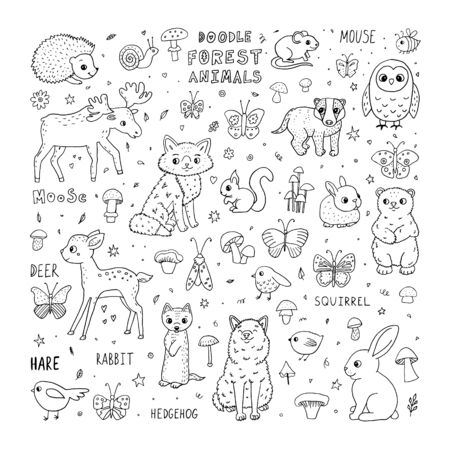 Cute doodle forest animals. Cartoon characters and lettering