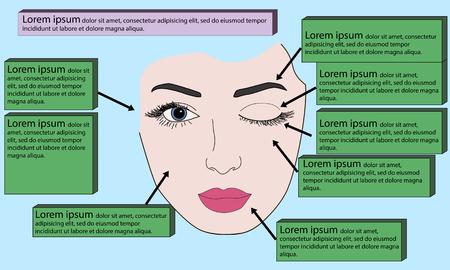 makeup artist: Face chart Makeup artist blank. Template using infographics.