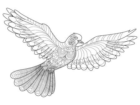 Dove Malbuch für Erwachsene Vektor-Illustration.