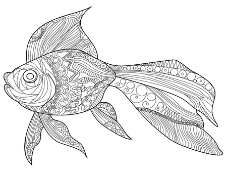 goldfish: Goldfish sea animal coloring book for adults vector illustration.