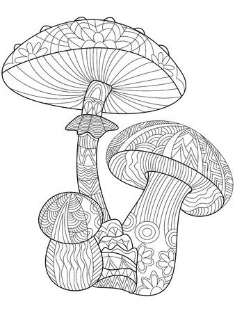 Funghi libro da colorare per l'illustrazione vettoriale adulti. Antistress colorare per adulti. stile Zentangle. linee bianche e nere. modello in pizzo
