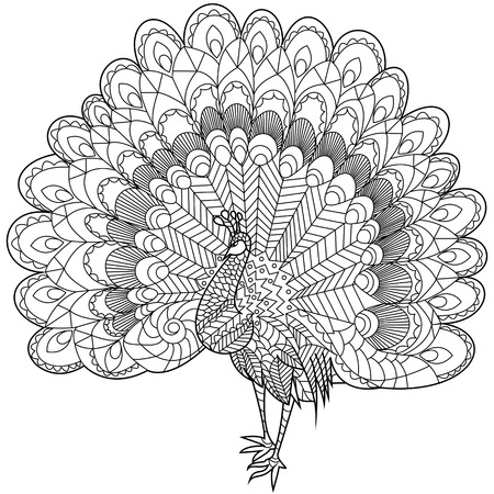 antistress: Peacock coloring book for adults vector illustration. Anti-stress coloring for adult. Zentangle style. Black and white lines. Lace pattern