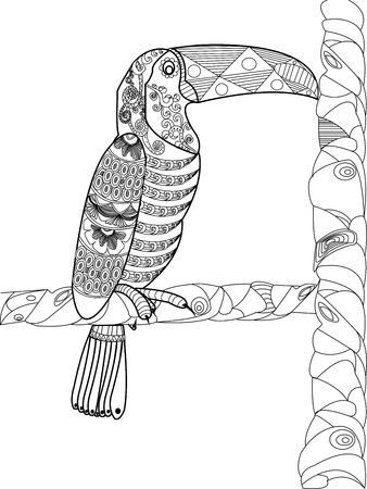 ornamental design: Toucan animal coloring book for adults vector illustration. Anti-stress coloring for adult. Zentangle style. Black and white lines. Lace pattern