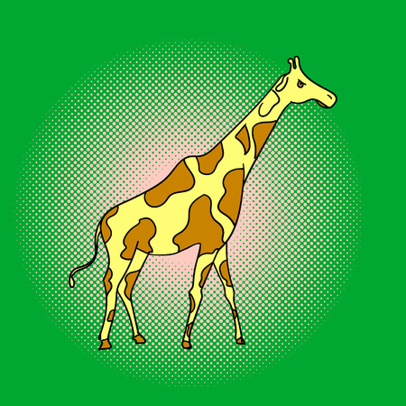 mara: Giraffe pop art vector. Beautiful adult Giraffe looking at us, illustration isolated on white