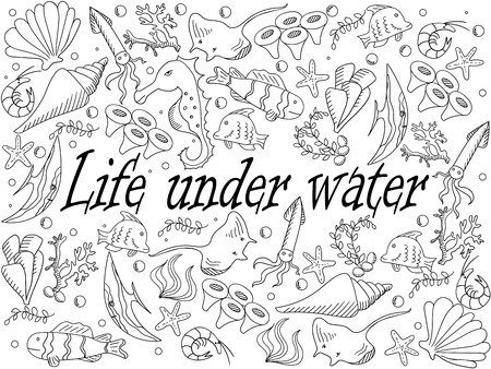 bubble sea anemone: Life under water coloring book line art design vector illustration. Sea bottom separate objects. Hand drawn doodle design elements.