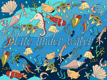 bottom: Life under water line art design vector illustration. Sea bottom separate objects. Hand drawn doodle design elements. Illustration