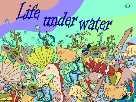 bubble sea anemone: Life under water line art design vector illustration. Sea bottom separate objects. Hand drawn doodle design elements. Illustration