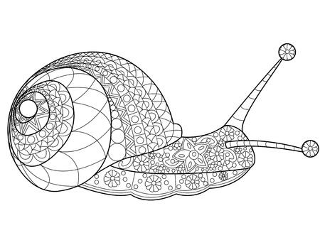 달팽이 성인 벡터 일러스트를 색칠하기 책. 어른을위한 스트레스 방지 색소. Zentangle 스타일. 흑백 라인. 레이스 패턴 일러스트
