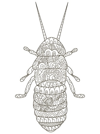 Beetle Coloring pet adult illustration. Anti-stress coloring for adults cockroach.  Black and white insect Illustration