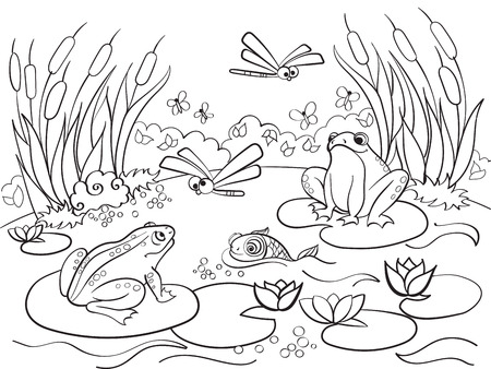 wetland landscape with animals coloring vector for adults Illustration
