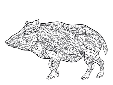 Wild boar coloring vector for adults Illustration