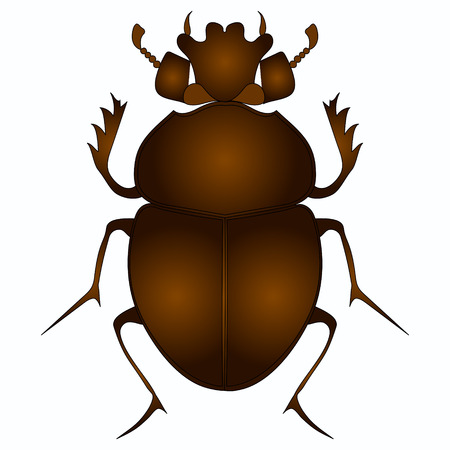 Egyptian Scarab beetle. Brown color object on white background vector illustration.