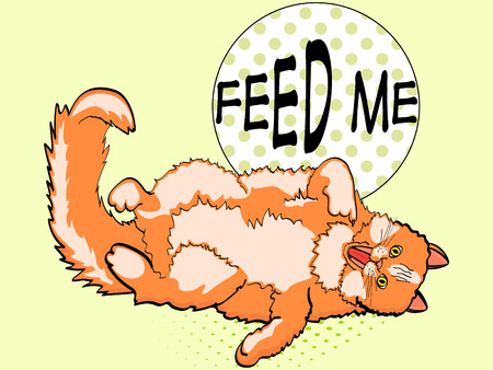 pop art background, red cat lying on back and showing finger in mouth. Write the feed me. Vector, imitation comic style