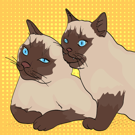 Pop art background. Two cats, the animal bites the other. Siberian breed, color Neva Masquerade or Siamese. Comic style, vector illustration. Illustration