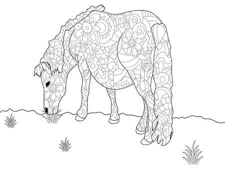 Anti stress coloring book pony. Horse doodle style. Black lines, white background raster
