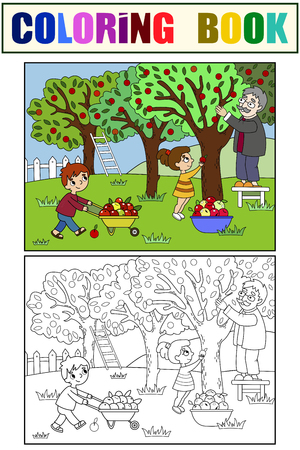 Kids cartoon on the theme of harvest vector. Color and black and white coloring. Vetores